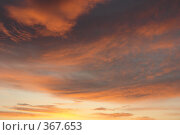 Купить «Небесные пейзажи», фото № 367653, снято 22 июля 2008 г. (c) Владимир Тимошенко / Фотобанк Лори