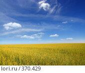 Купить «Небо и земля», фото № 370429, снято 20 июля 2008 г. (c) Александр Гаврилов / Фотобанк Лори