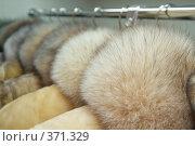 Купить «Мех», фото № 371329, снято 22 января 2019 г. (c) Лямзин Дмитрий / Фотобанк Лори