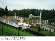 Купить «Петергоф, фонтан», фото № 372145, снято 20 июля 2008 г. (c) Alexander Shibaev / Фотобанк Лори
