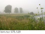 Купить «Туманное утро», фото № 375129, снято 20 июля 2008 г. (c) Андрей Рыбачук / Фотобанк Лори