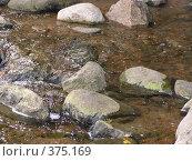 Ручей. Стоковое фото, фотограф Дмитрий Кочетков / Фотобанк Лори