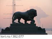 Купить «Лев», фото № 382077, снято 9 июля 2020 г. (c) Георгий Солодко / Фотобанк Лори