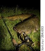 Купить «Трофей», фото № 384693, снято 31 июля 2008 г. (c) Сергей Бондарук / Фотобанк Лори