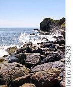 Купить «Каменистый берег», фото № 384793, снято 3 августа 2008 г. (c) Галина Щеглова / Фотобанк Лори