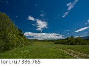 Купить «Солнечная долина», фото № 386765, снято 11 июня 2008 г. (c) Андрей Винокуров / Фотобанк Лори