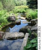 Купить «Водопад в японском саду», фото № 388353, снято 26 июля 2008 г. (c) Евгения Лаврова / Фотобанк Лори
