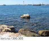 Купить «Средиземное море», фото № 390305, снято 5 июля 2007 г. (c) Алла Кригер / Фотобанк Лори