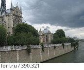 Купить «Собор Парижской Богоматери», фото № 390321, снято 27 июня 2007 г. (c) Алла Кригер / Фотобанк Лори