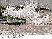 Купить «Брызги прибоя на Азовском Море. Голубицкая, Темрюк», фото № 391097, снято 6 августа 2008 г. (c) Федор Королевский / Фотобанк Лори
