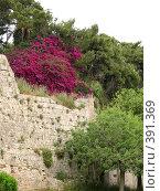 Купить «Родос. Стены старого города», фото № 391369, снято 14 мая 2008 г. (c) Хименков Николай / Фотобанк Лори