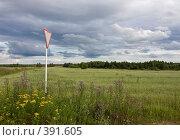 Купить «Средняя полоса России», фото № 391605, снято 26 июля 2008 г. (c) Юрий Синицын / Фотобанк Лори