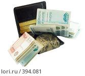 Купить «Кошелек для денег и карточек», фото № 394081, снято 22 мая 2008 г. (c) Ivan Korolev / Фотобанк Лори