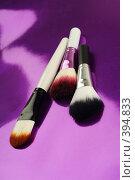 Купить «Кисти для макияжа», фото № 394833, снято 17 июля 2008 г. (c) Лямзин Дмитрий / Фотобанк Лори