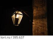 Купить «Старый фонарь», фото № 395637, снято 4 августа 2008 г. (c) Антон Голубков / Фотобанк Лори