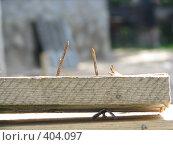 Купить «Эхо стройки», фото № 404097, снято 2 августа 2008 г. (c) Алексей Гунев / Фотобанк Лори