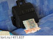 Купить «Пачки денег рядом с черным дипломатом», фото № 411837, снято 8 августа 2008 г. (c) Артём Анисимов / Фотобанк Лори