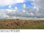 Купить «Сенокос», фото № 413641, снято 30 июля 2008 г. (c) Голофеева Галина / Фотобанк Лори