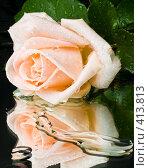 Купить «Розовая роза с каплями воды на зеркале на черном фоне», фото № 413813, снято 16 августа 2008 г. (c) Мельников Дмитрий / Фотобанк Лори