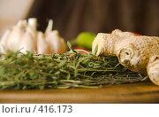 Имбирь и тимьян на фоне других пряностей. Стоковое фото, фотограф Марина Субочева / Фотобанк Лори