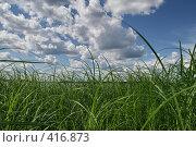 """Купить «Озеро """"Селигер"""" (о. Волго)», фото № 416873, снято 27 июля 2008 г. (c) Александр Секретарев / Фотобанк Лори"""