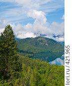 Альпийский пейзаж (2008 год). Стоковое фото, фотограф Aleksey Trefilov / Фотобанк Лори