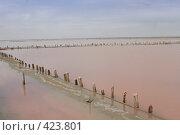 Купить «Соляное озеро с заброшенным соляным промыслом (Украина)», фото № 423801, снято 3 мая 2008 г. (c) Кирилл Курашов / Фотобанк Лори