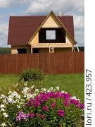 Купить «Строительство дачного домика», фото № 423957, снято 8 августа 2008 г. (c) Владимир Чмелёв / Фотобанк Лори