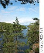 Купить «Валаамские сосны, скалистый берег», фото № 425181, снято 6 августа 2008 г. (c) Морковкин Терентий / Фотобанк Лори