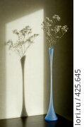Купить «Гипсофила в длинной стеклянной вазе», фото № 425645, снято 16 февраля 2008 г. (c) Ольга Хорькова / Фотобанк Лори