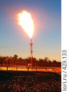 Купить «Факел», фото № 429133, снято 6 июня 2008 г. (c) Жданович Юрий / Фотобанк Лори