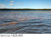 Купить «Озеро», фото № 429441, снято 23 августа 2008 г. (c) Катыкин Сергей / Фотобанк Лори