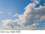 Купить «Синее небо и облака», фото № 429505, снято 17 мая 2008 г. (c) Надежда Болотина / Фотобанк Лори