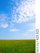 Купить «Зеленое поле и голубое небо», фото № 429925, снято 27 июля 2008 г. (c) Вадим Пономаренко / Фотобанк Лори