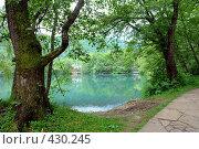 Купить «Высокогорное озеро», фото № 430245, снято 22 июня 2008 г. (c) Александр Тараканов / Фотобанк Лори