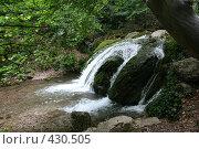 Купить «Исток водопада Джур-джур в крыму», фото № 430505, снято 11 июня 2008 г. (c) Сергей Авдеев / Фотобанк Лори
