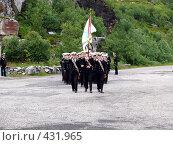 Купить «Строй моряков в торжественном марше», эксклюзивное фото № 431965, снято 13 июля 2008 г. (c) Иван Мацкевич / Фотобанк Лори