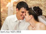 Купить «Свадьба. Молодожёны.», фото № 431993, снято 23 августа 2008 г. (c) Федор Королевский / Фотобанк Лори