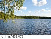 Купить «Пейзаж с озером», фото № 432073, снято 23 августа 2008 г. (c) Катыкин Сергей / Фотобанк Лори