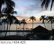 Купить «Морской закат, пальмы», фото № 434425, снято 11 ноября 2007 г. (c) anery yesmurzayeva / Фотобанк Лори