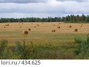 Купить «Поле с сеном и тучами», фото № 434625, снято 23 мая 2018 г. (c) Дятлов Антон / Фотобанк Лори