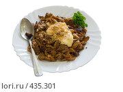 Купить «Жаркое с грибами на белой тарелке», фото № 435301, снято 21 августа 2008 г. (c) Федор Королевский / Фотобанк Лори