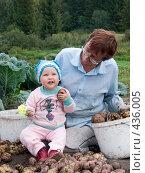 Купить «Бабушка и внучка перебирают картофель», фото № 436005, снято 31 августа 2008 г. (c) Ирина Солошенко / Фотобанк Лори