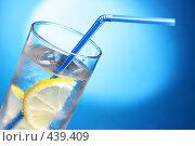 Купить «Напиток с лимоном и льдом», фото № 439409, снято 19 марта 2019 г. (c) Роман Сигаев / Фотобанк Лори