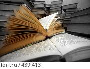 Купить «Подготовка к экзаменам», фото № 439413, снято 11 мая 2007 г. (c) Морозова Татьяна / Фотобанк Лори