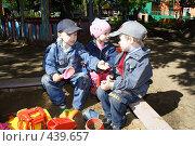 Купить «Дети играют в песочнице», эксклюзивное фото № 439657, снято 5 июня 2008 г. (c) Дмитрий Неумоин / Фотобанк Лори