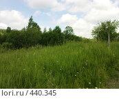Купить «Летний пейзаж», фото № 440345, снято 6 июля 2008 г. (c) Айрат Петров / Фотобанк Лори