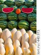 Купить «Арбузы и дыни», фото № 440973, снято 4 сентября 2008 г. (c) Елена Блохина / Фотобанк Лори