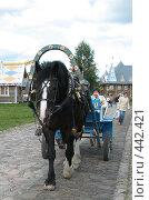 Купить «Одна лошадиная сила», фото № 442421, снято 5 августа 2008 г. (c) Морковкин Терентий / Фотобанк Лори