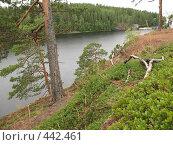 Купить «Валаамский берег. Вид на залив», фото № 442461, снято 6 августа 2008 г. (c) Морковкин Терентий / Фотобанк Лори